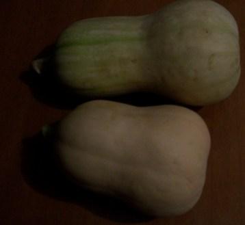 calabaza-butternut-cacahuete-1