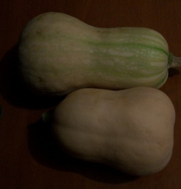calabaza-butternut-cacahuete-7