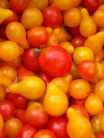 tomate-chery-bombilla