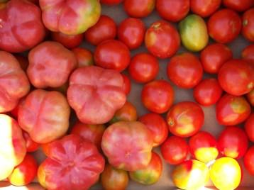 tomate-montserrat-pera