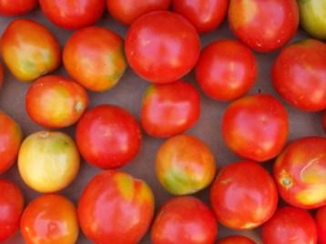 tomate-pera-3