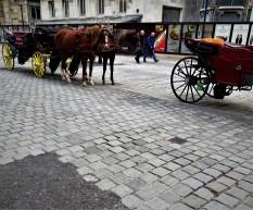 Pflaster Wien 2017 Stephansdom Wr. Würfel wird vollständig entfernt