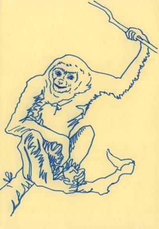 Weisshändiger Gibbon