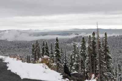 Marco-Bos-Yellowstone-15-R