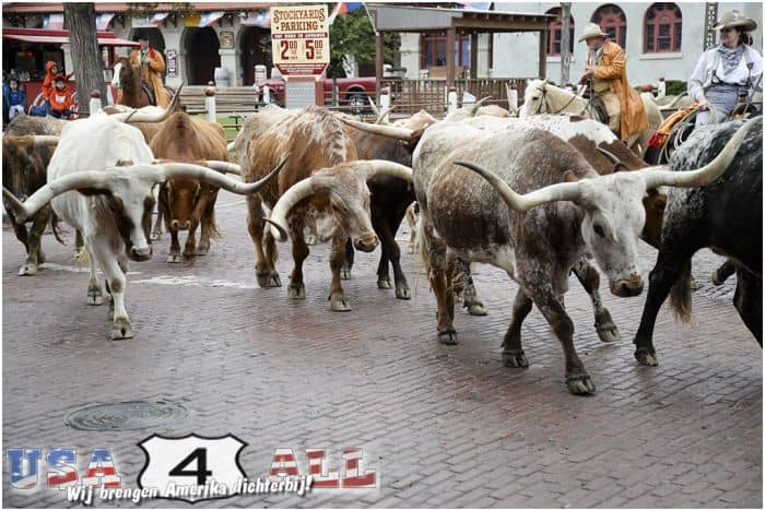 Stockyards-01