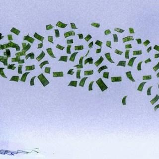 fraudeurs, Internationale belastinghervorming