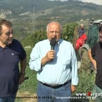 Vergato terra dei vini - Azienda Agricola Ca' Bombi, Troncelliti