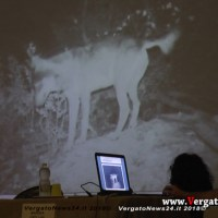 Il lupo ritorna in Appennino - A Castel d'Aiano, il convegno