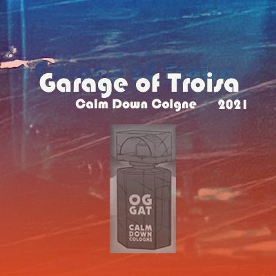 garage of trois _ blocked