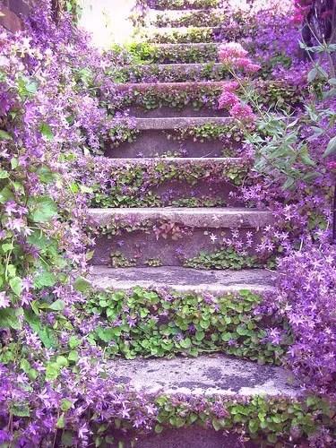 Escalinata Verili