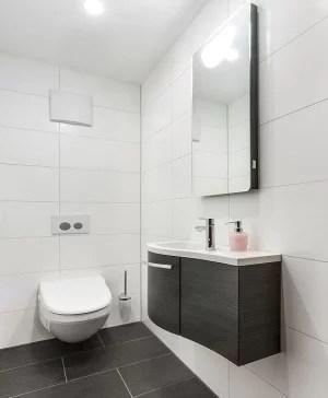 Verlaagd Plafond in Toilet