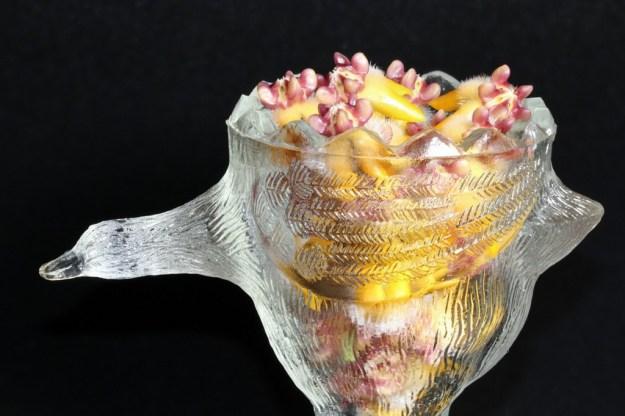 Hoya praetorii in a Crystal Egg Cup