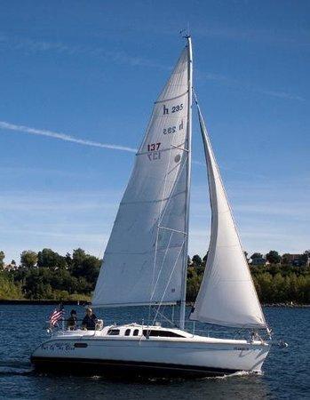 let-s-go-sailing-802