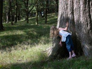hiding behind trees_200285824-001_412x309