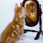 Old Mirror, New Mirror