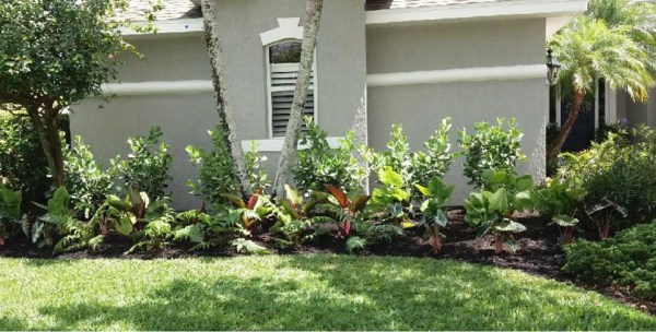 home - premier landscape solutions