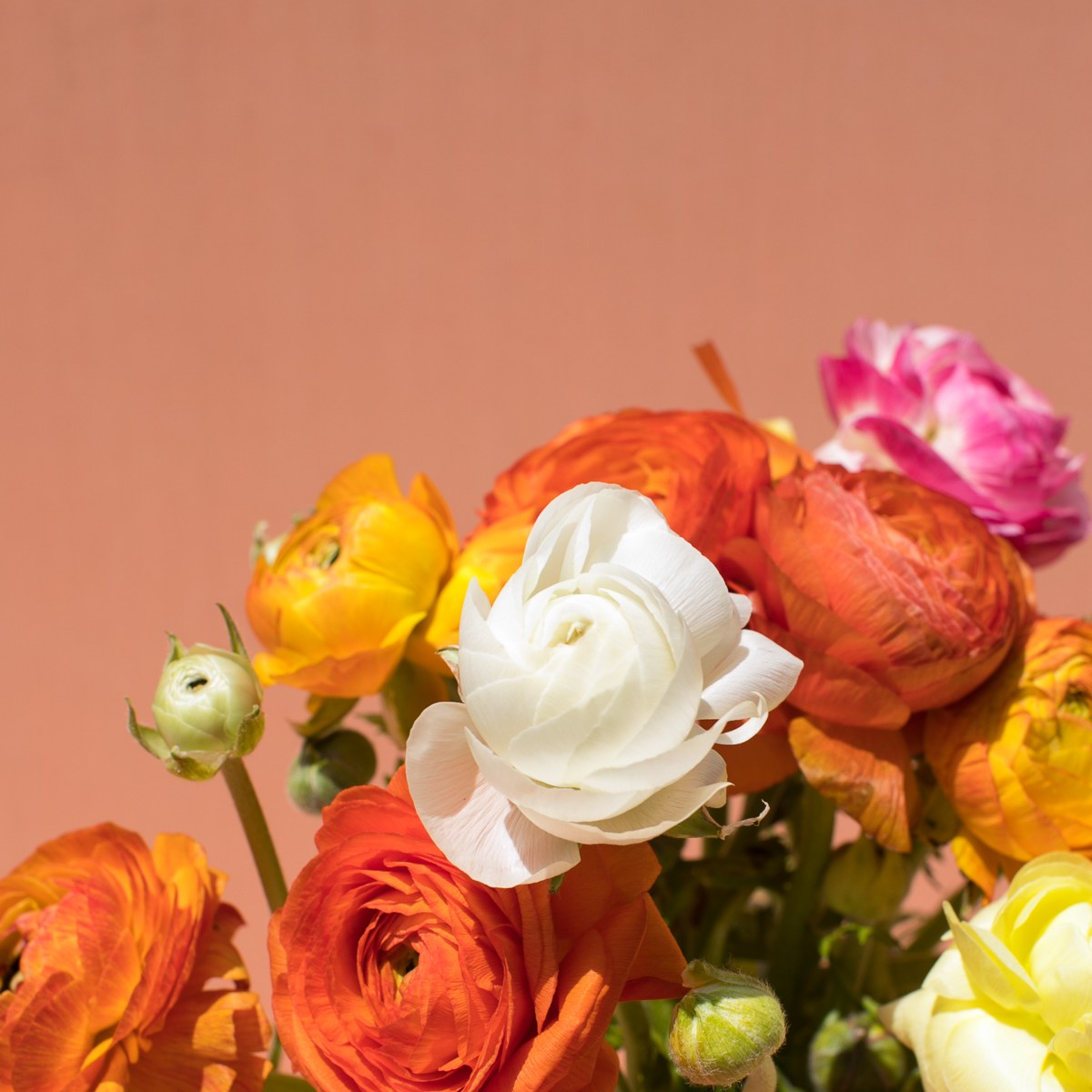 close up of orange bouquet with white and pink accent flowers
