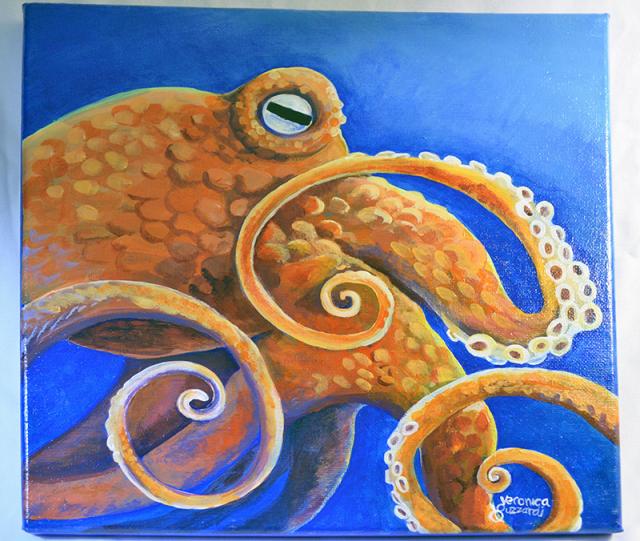 octopus12x12