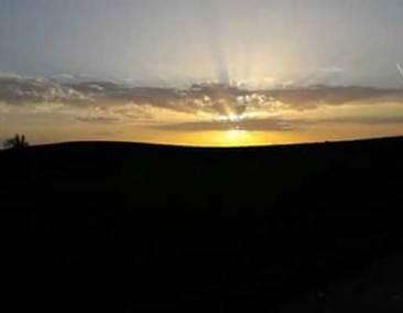 albacamminodisantiago-veronicaiovino