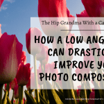AD image for Using low angle shot in photography