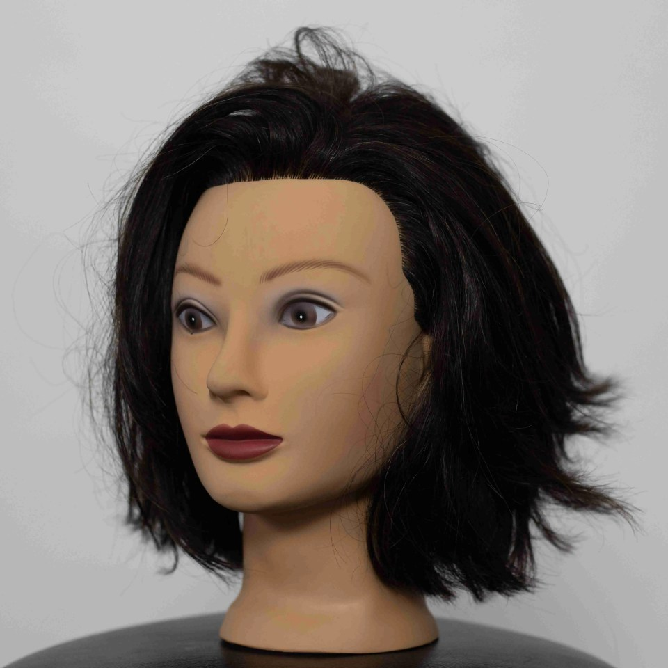 fake head with full face in focus and no blur