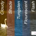 Ad Image for adjusting White Balance settings Post