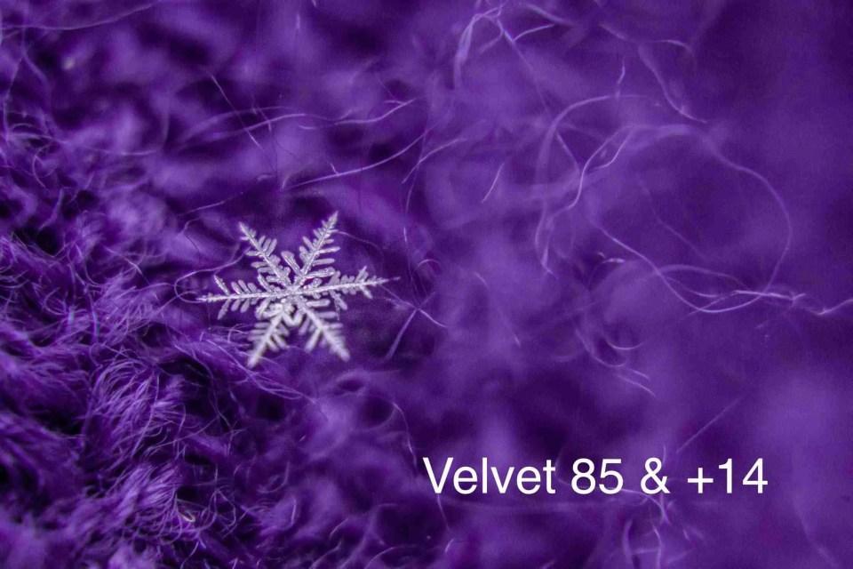 macro snowflake on a purple background