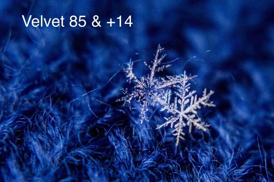 macro snowflake on a blue background