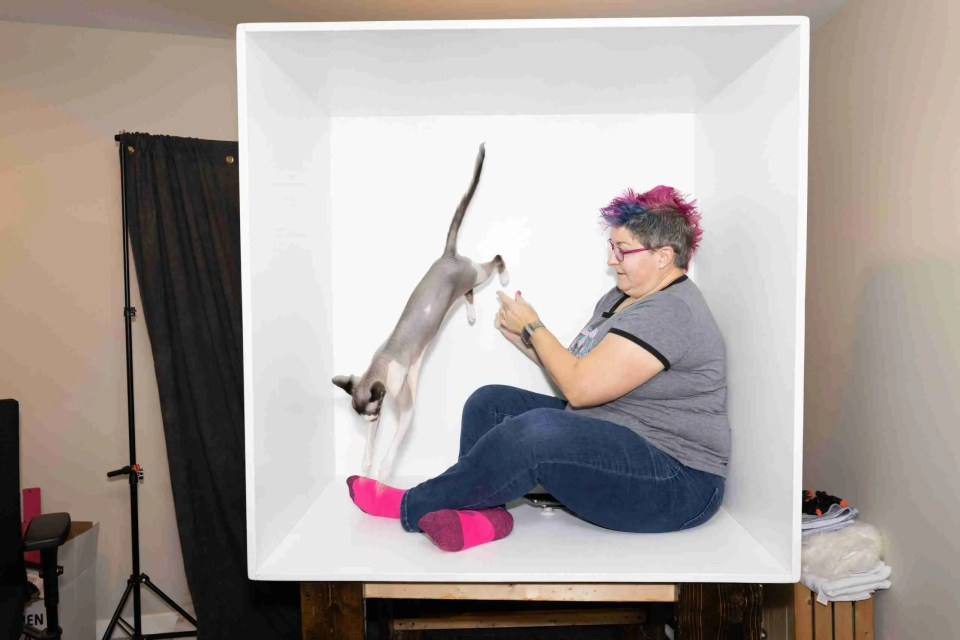 Blooper shot of a woman and her cat jumping in the box for box photo composite post