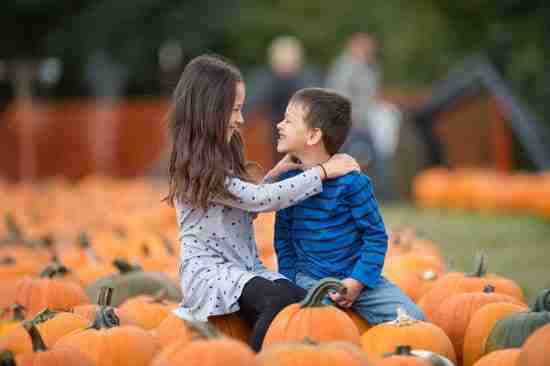 siblings smiling at one another in a pumpkin patch for an autumn photoshoot
