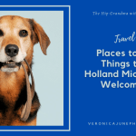 PIN image for dog friendly things to do in Holland MI