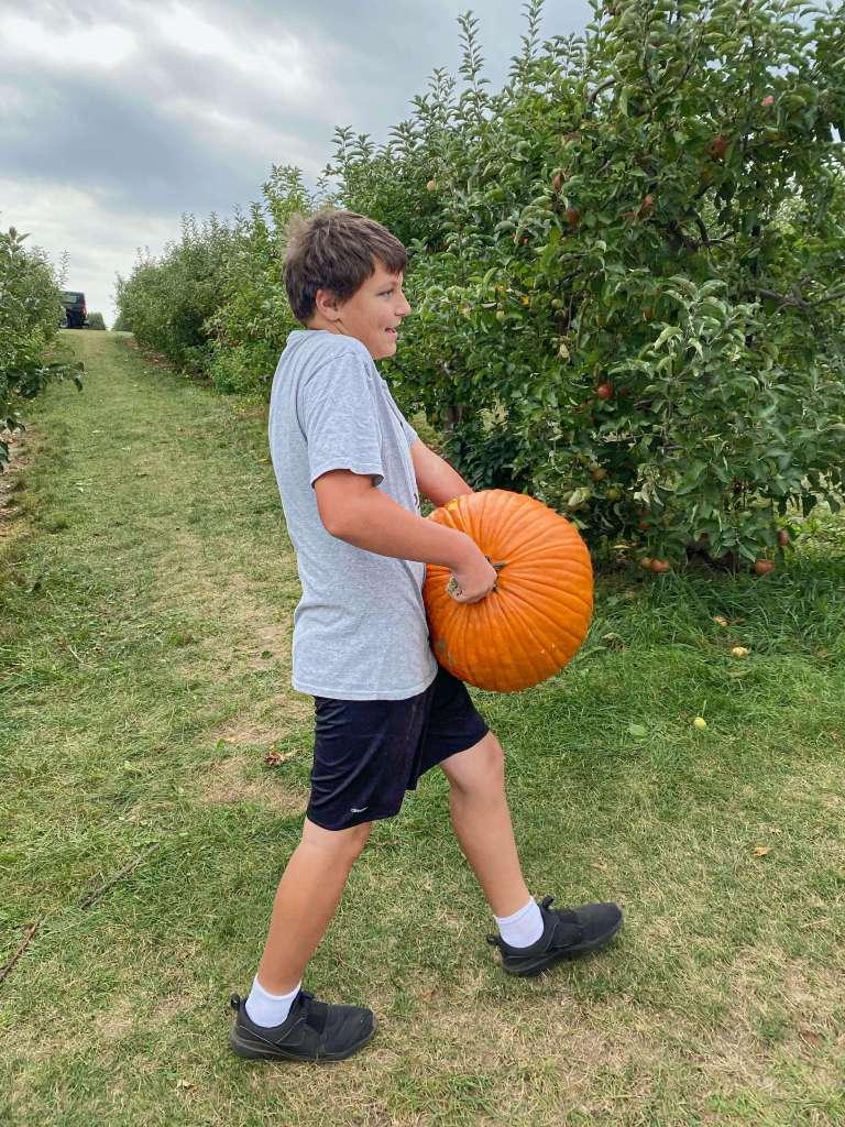 a boy carries a giant pumpkin across the apple orchard