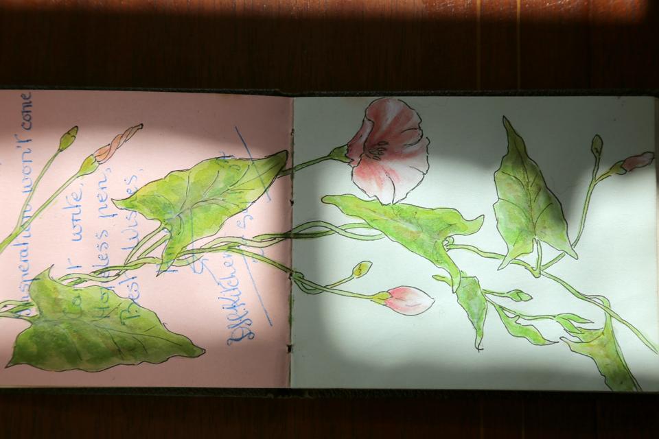seasonal-journal-veronica-roth-13