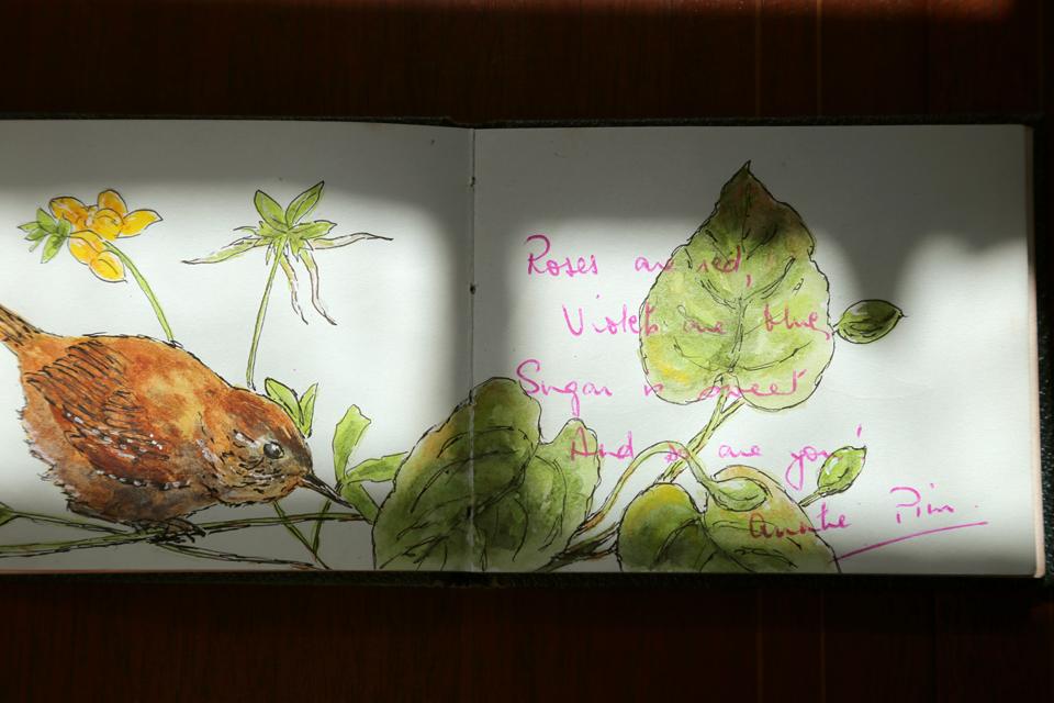 seasonal-journal-veronica-roth-15