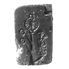 kunera-08387