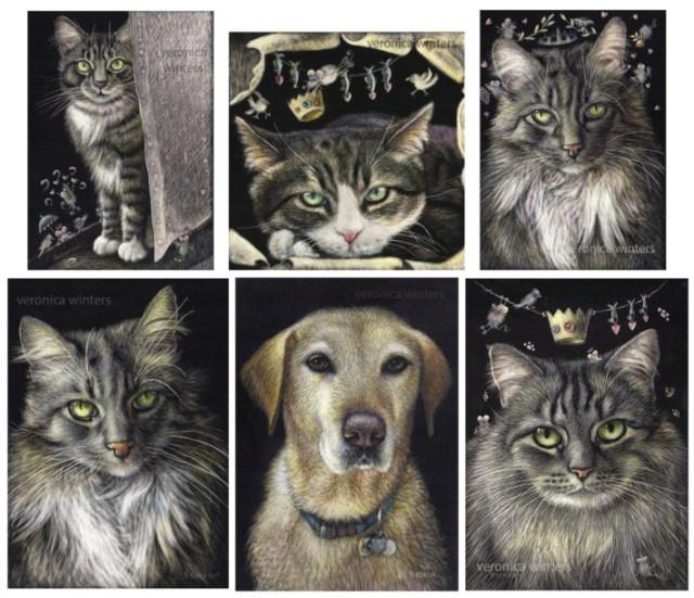 portrait of pets