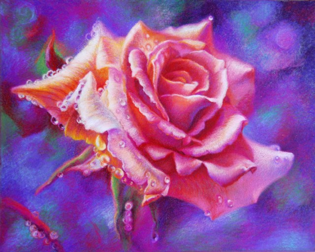 rose colored pencil by veronica winters
