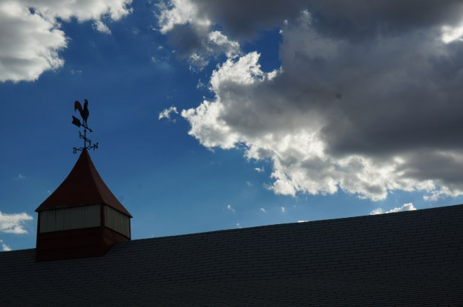 ©Veronica Markland | New Mexico Summer Trip