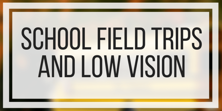 School Field Trips And Low Vision