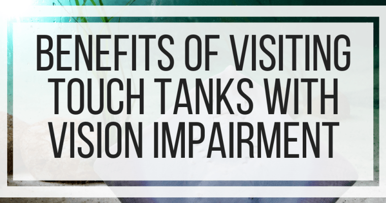 Benefits of Visiting Touch Tanks With Vision Impairment