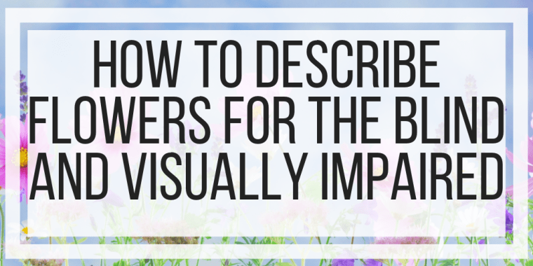 How To Describe Flowers for the Blind and Visually Impaired