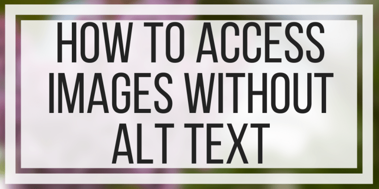 How To Access Images Without Alt Text