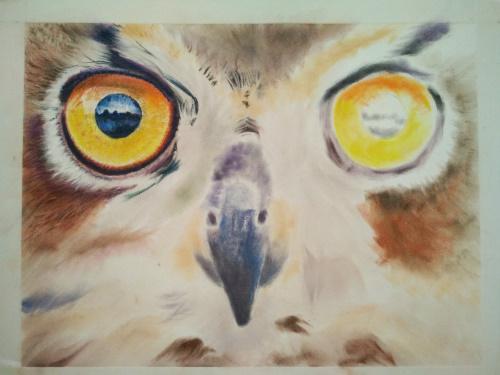 Tekening uil ogen 5