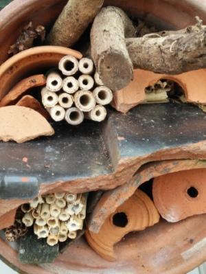 insectenhotelletje in bloempot