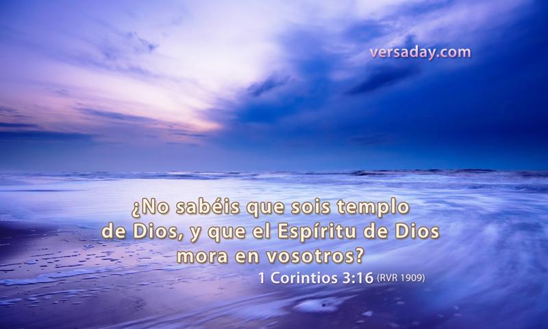 1 Corintios 316  Versiculo para Enero 16