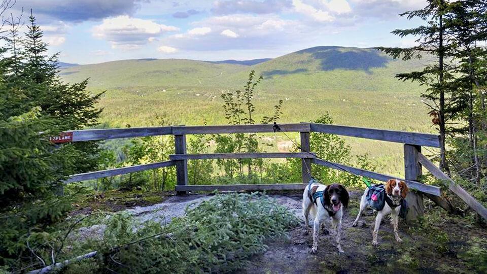 Photo à la montagne à Deux-Têtes pour notre article Top 7 – Randos à faire avec son chien (Partie 2)