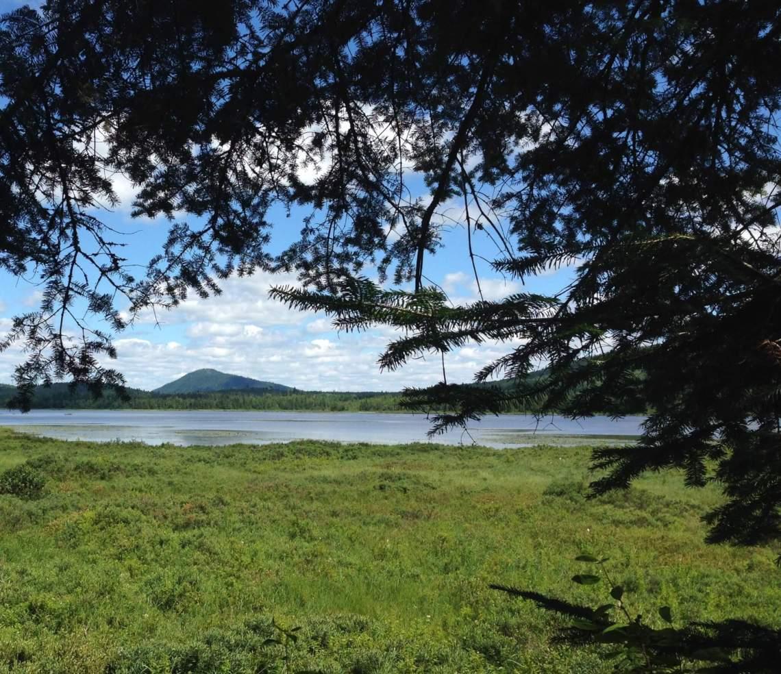 Image représentant un secteur du sentier au parc des Appalaches