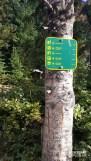 Versant_Plein-air_DevilsThumb_Alberta_LR_05