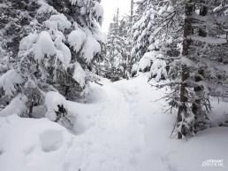 Versant_Plein-air_Mont-Gosford-hiver_LR_09