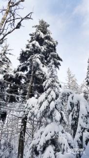 Versant_Plein-air_OwlsHead-hiver_LR_05